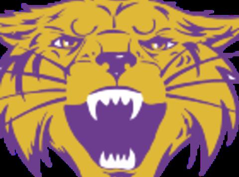 school sports fundraising - Bethel Wildcats