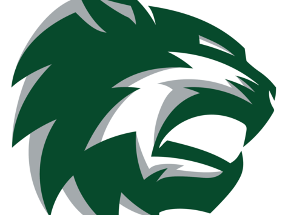 De Soto Athletics
