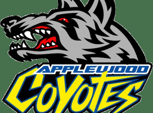 ice hockey fundraising - 2010 Gold Coyotes