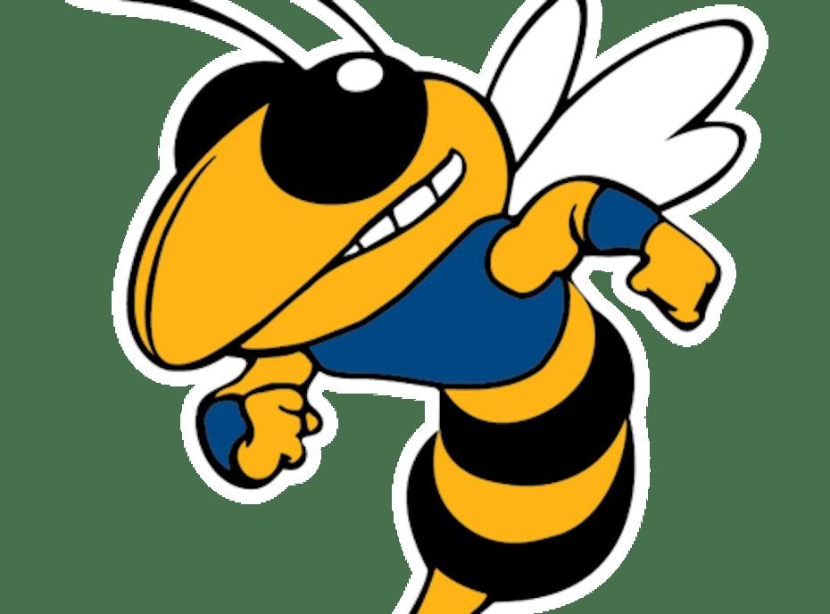 Big Lake Hornets