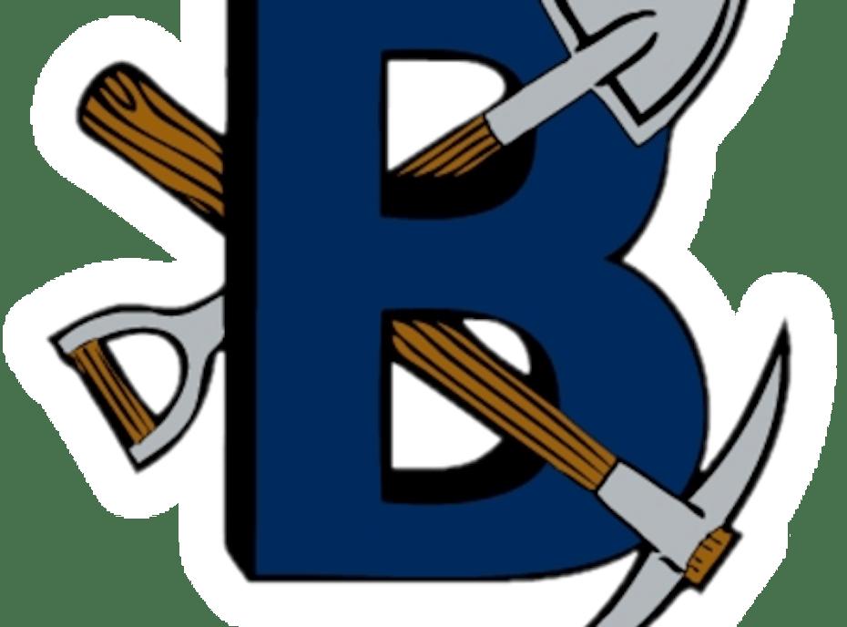 Bingham Miners