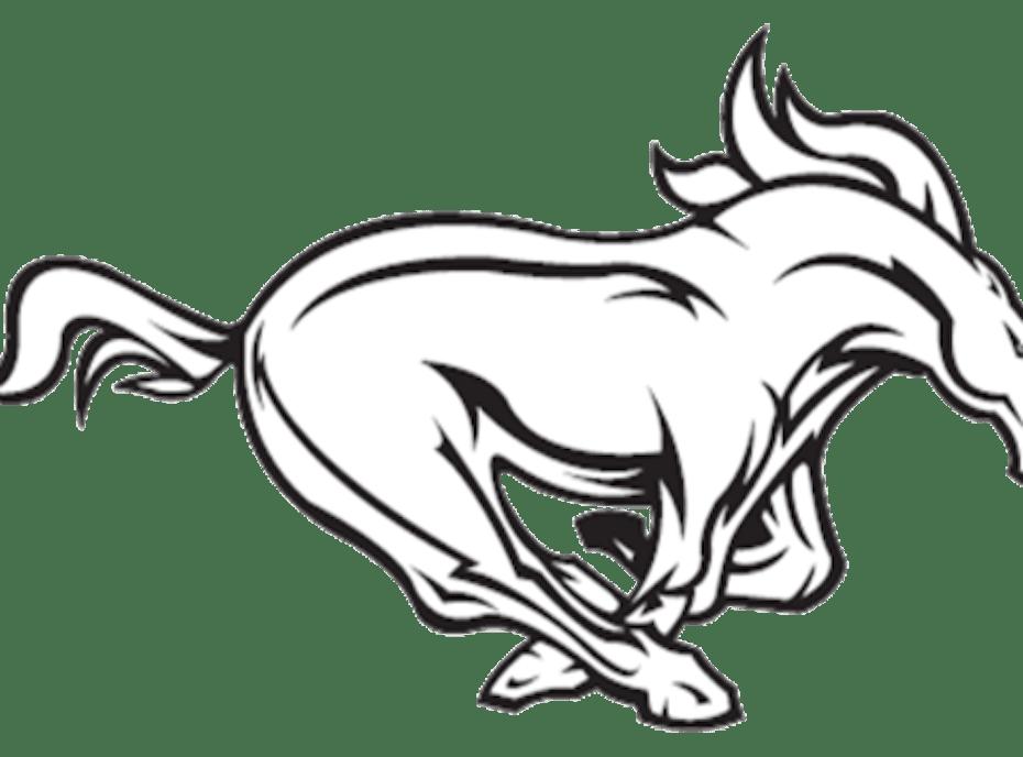 Bladensburg Mustangs