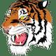 Bluffton Tigers