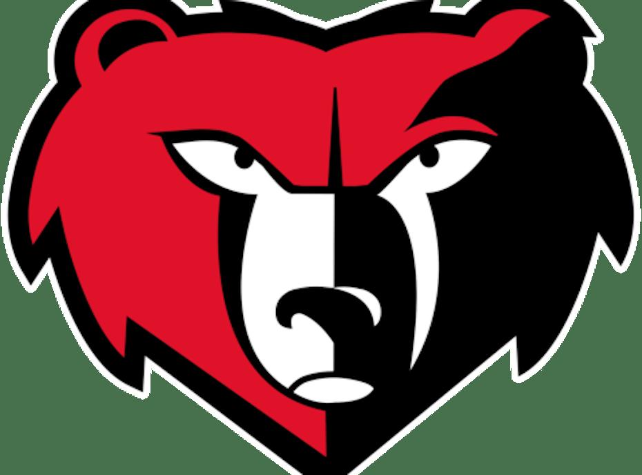 Bradshaw Mountain Bears