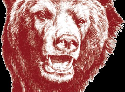 athletics department fundraising - Broadneck Bruins