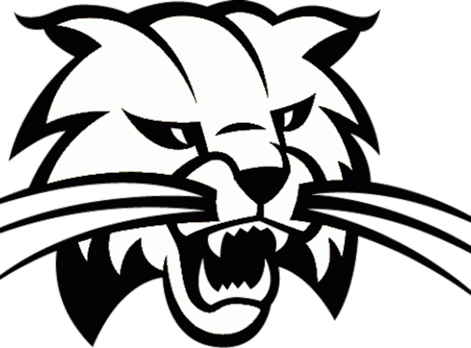 Cambridge Bobcats