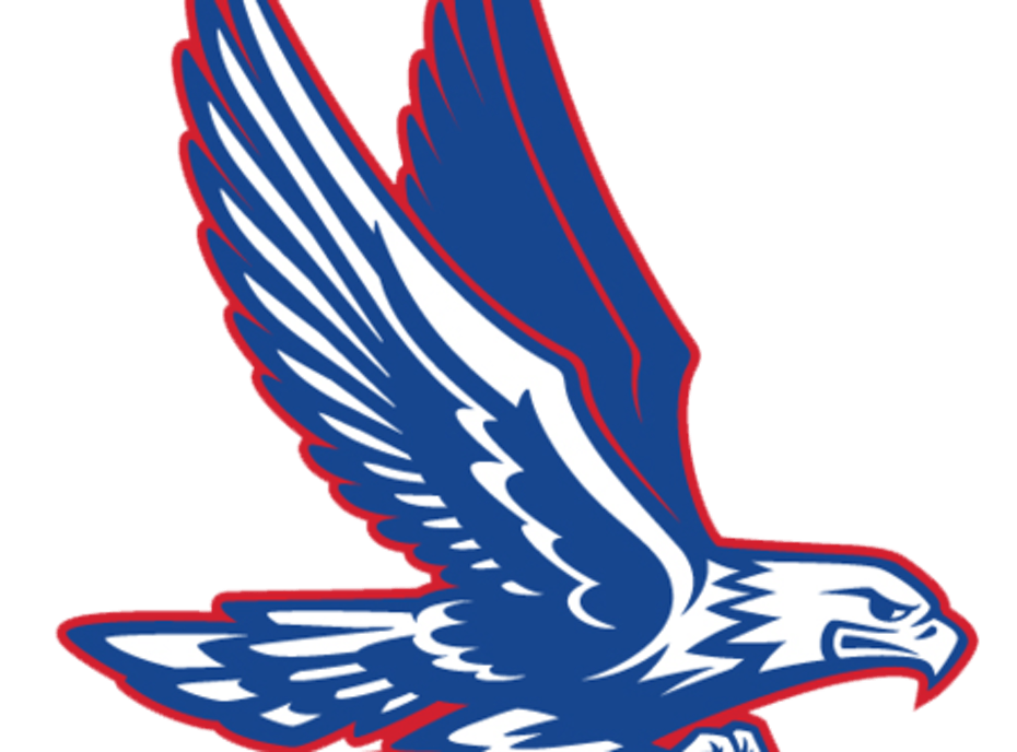 Central Academy of Excellence Eagles