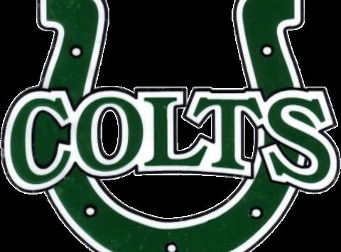 Cloverleaf Colts