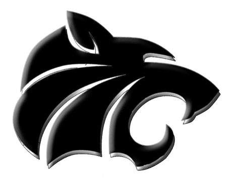 athletics department fundraising - Grinnell Tigers