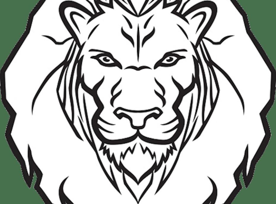 Newaygo Lions