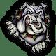 Petersburg-Summerfield Bulldogs