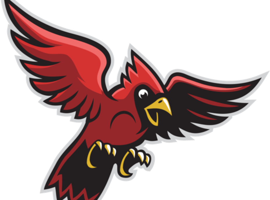 Sandy Valley Cardinals