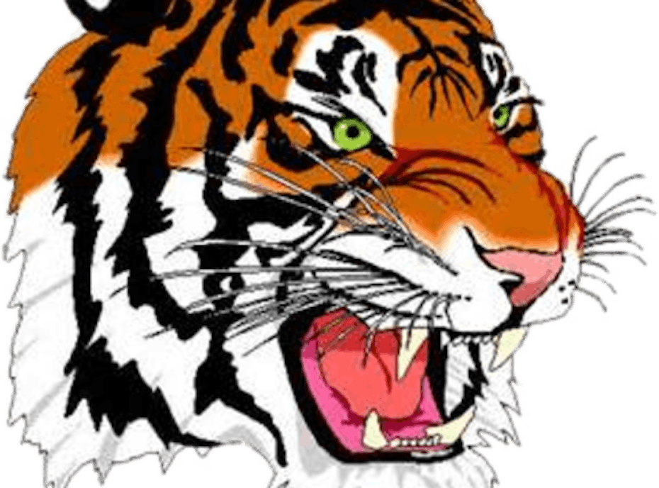 Shelby Tigers
