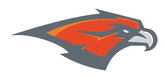 Skyridge Falcons