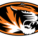 Springfield Local Tigers