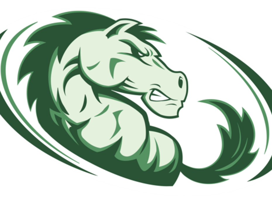 Strongsville Mustangs