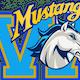 Walnut Mustangs