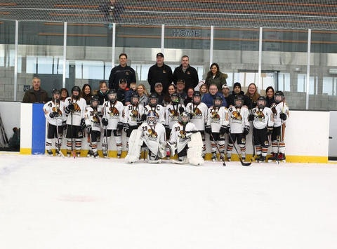 ice hockey fundraising - Bisons 12U Gold