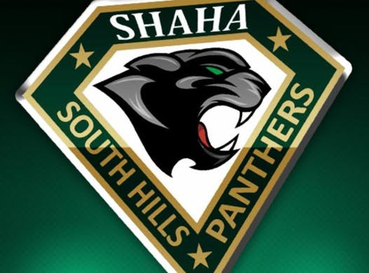 ice hockey fundraising - South Hills Panthers