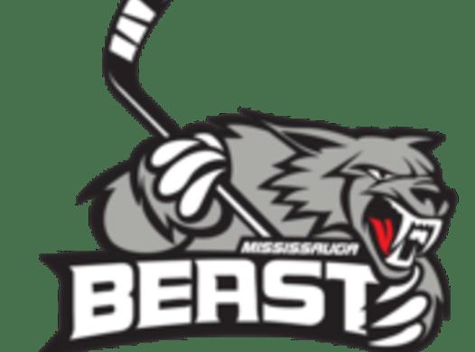 ice hockey fundraising - Mississauga Beast 2007