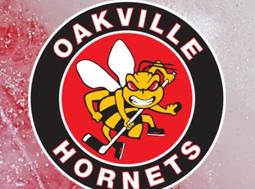 ice hockey fundraising - Oakville Hornets Atom B 2018-2019