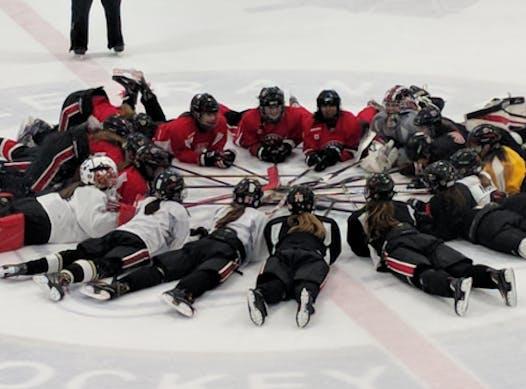 ice hockey fundraising - Oakville Hornets Bantam B - Rego