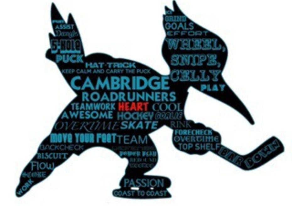 Cambridge roadrunners Peewee A 2018/2019 Team