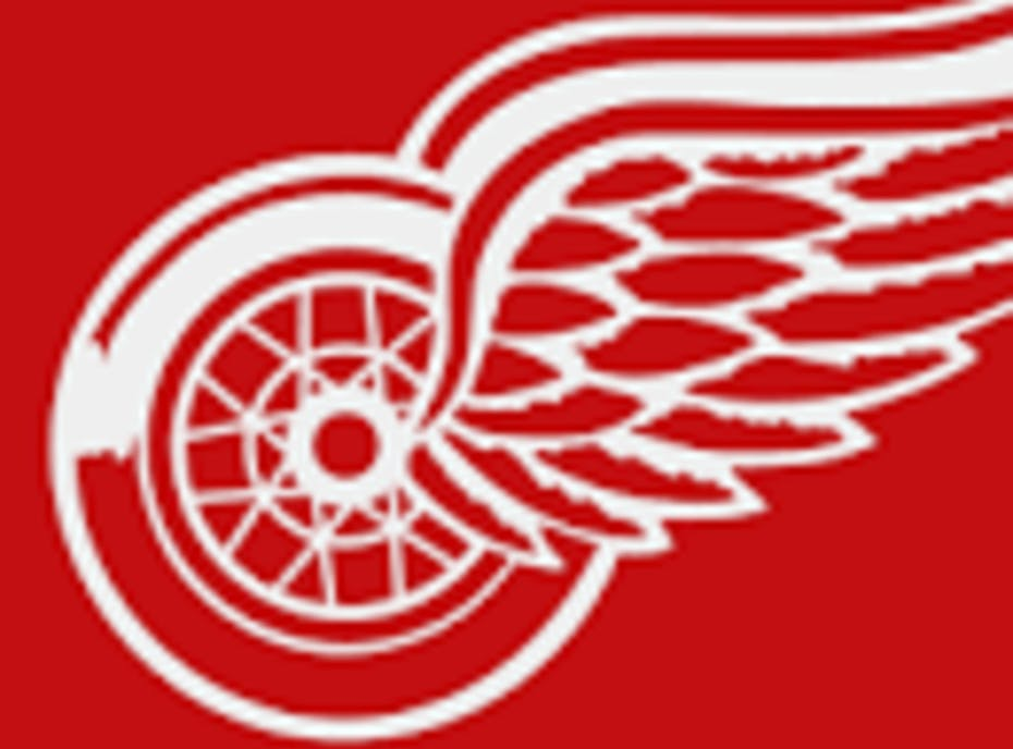 Toronto Red Wings 2008 Atom