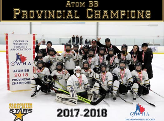 sports teams, athletes & associations fundraising - GCGH Stars Peewee B