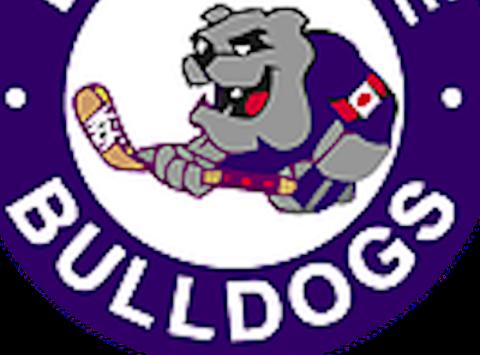 ice hockey fundraising - Etobicoke Bulldogs Novice Blue