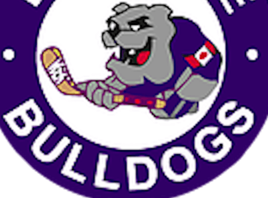 ice hockey fundraising - Etobicoke Bulldogs Novice Blue