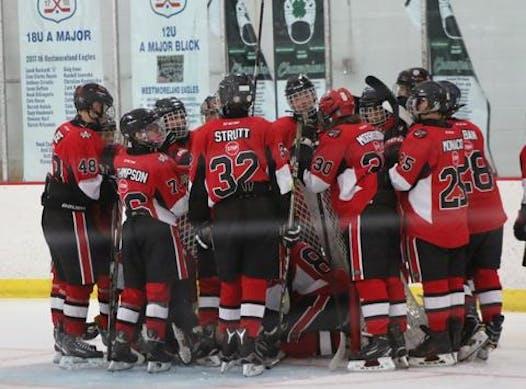 sports teams, athletes & associations fundraising - Viper Stars Ice Hockey 04