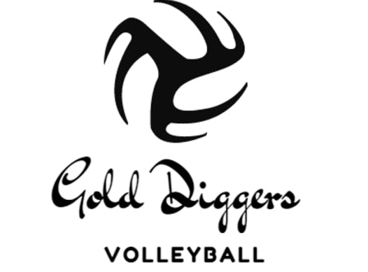 volleyball fundraising - Gold Diggers