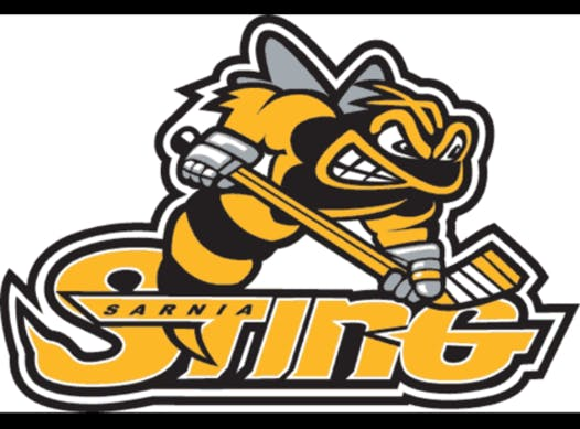 ice hockey fundraising - Sarnia Sting Novice T2