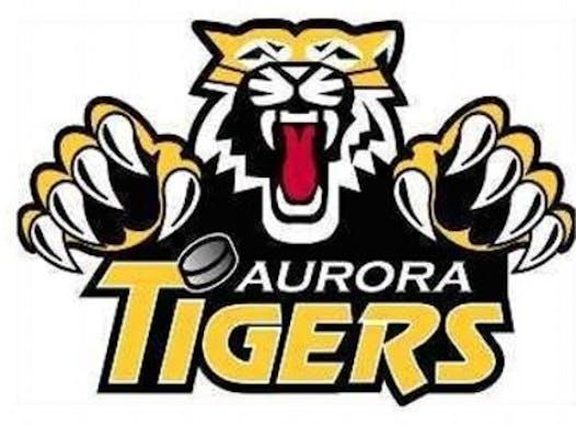 sports teams, athletes & associations fundraising - Aurora Tigers PeeWee AE