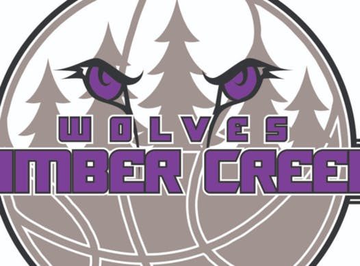 basketball fundraising - Timber Creek Girls Basketball