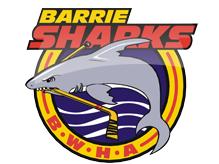 Barrie Sharks Peewee B