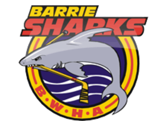 ice hockey fundraising - Barrie Sharks Peewee B