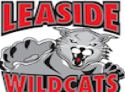 ice hockey fundraising - Leaside Wildcats Loft