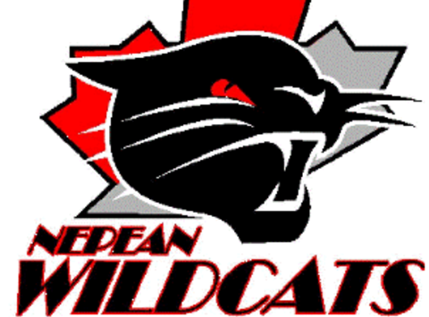 ice hockey fundraising - Nepean Wildcats Atom AA