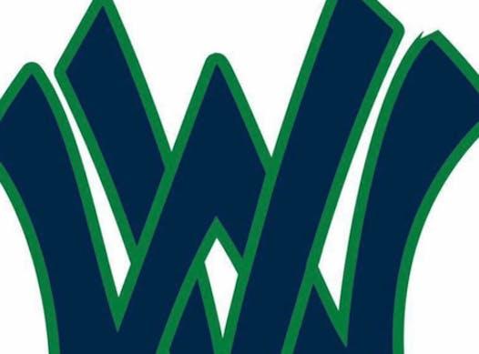 softball fundraising - West Virginia Dusters '04