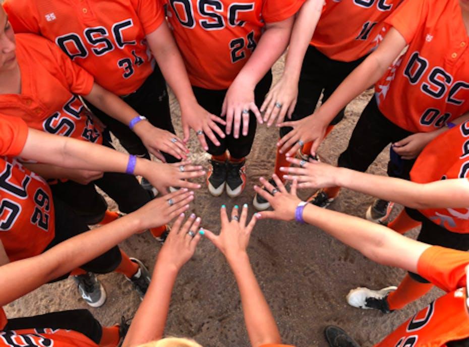 Outsiders Softball Club
