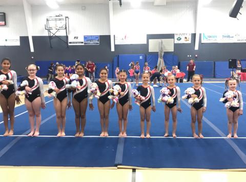 gymnastics fundraising - Flip Zone Gymnastics