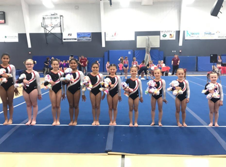 Flip Zone Gymnastics