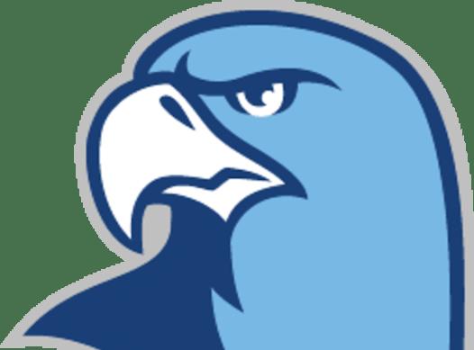 baseball fundraising - Triangle Sports Hawks