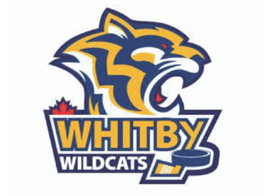 ice hockey fundraising - Whitby Midget Europe Team 2018