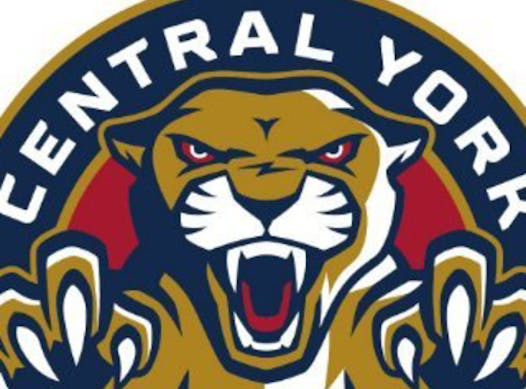 ice hockey fundraising - Central York Panthers U18 Red