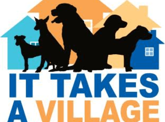 non-profit & community causes fundraising - It Takes A Village Canine Rescue