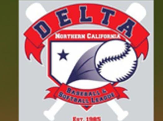 baseball fundraising - Delta Baseball & Softball league