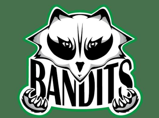 baseball fundraising - Fox River Bandits (Freschi)
